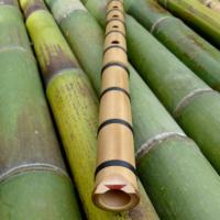 A Shakuhaci, or Japanese bamboo flute